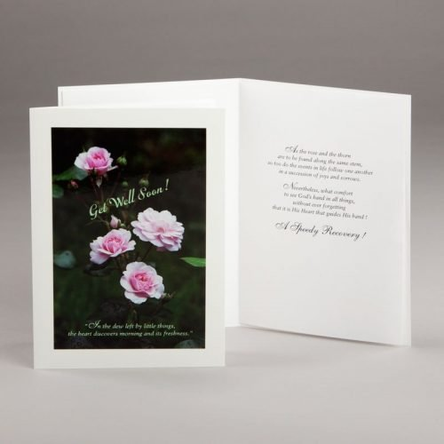 get well card-a freshness of roses