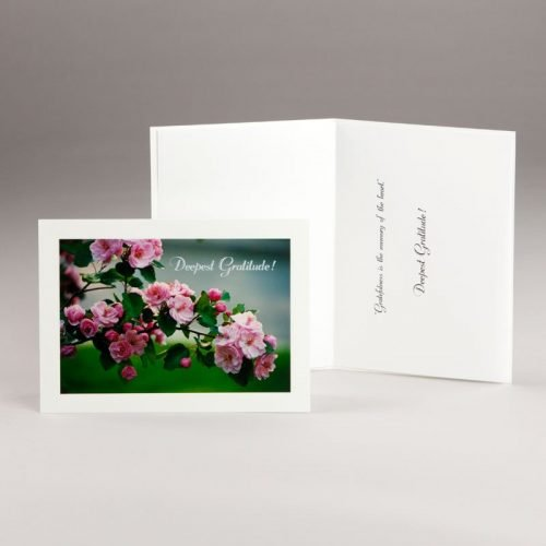 apple blossoms thank-you card