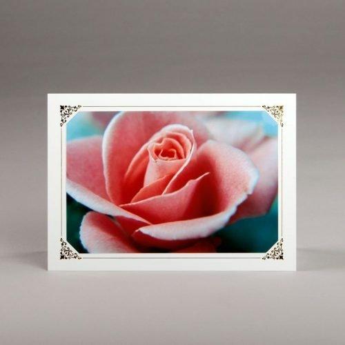 card without verse-rose petals
