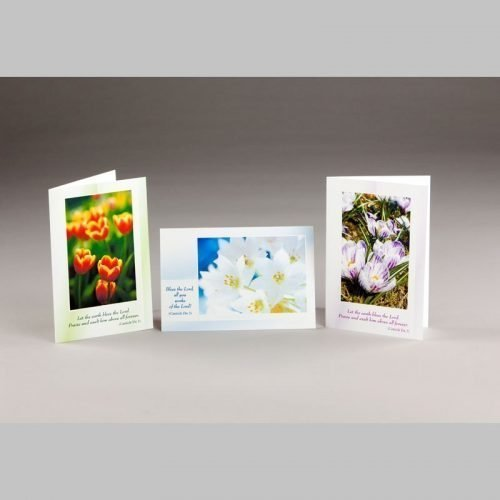 note card-spring blossoms 1