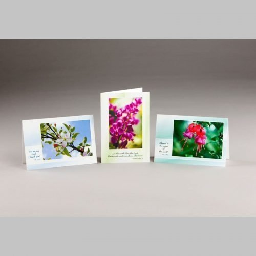 note card-spring blossoms 2