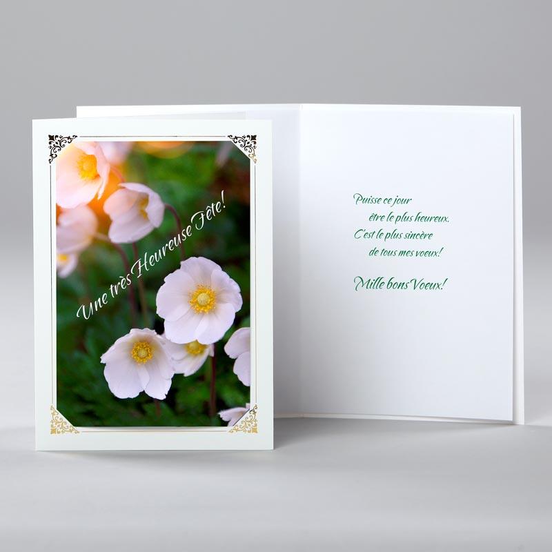 carte anniversaire - mille bons voeux